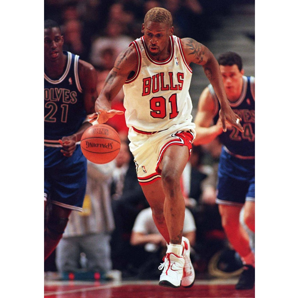 32dd72ed1424 ... Nike Air Shake Ndestrukt Dennis Rodman